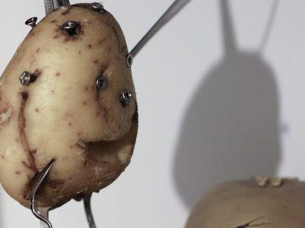 Πατάτες αντι για Μολότωφ