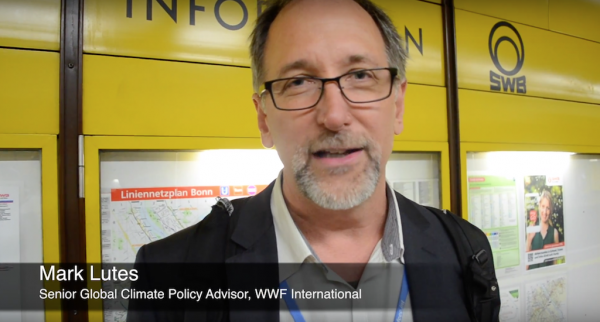 A role for civil society in the climate negotiations?