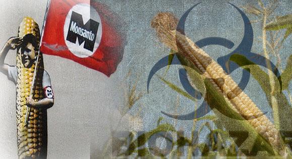 Monsanto_EU
